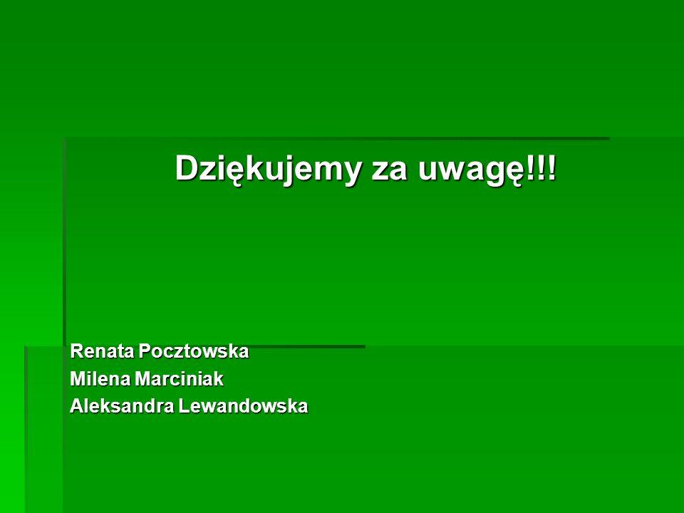 Dziękujemy za uwagę!!! Renata Pocztowska Milena Marciniak