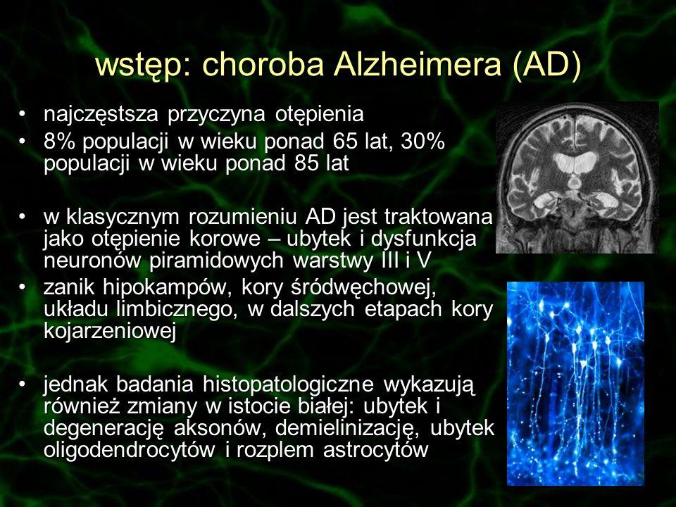wstęp: choroba Alzheimera (AD)