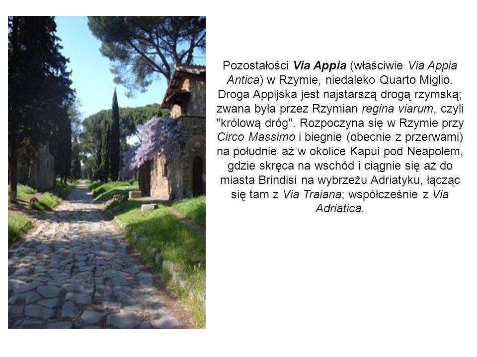Pozostałości Via Appia (właściwie Via Appia Antica) w Rzymie, niedaleko Quarto Miglio.