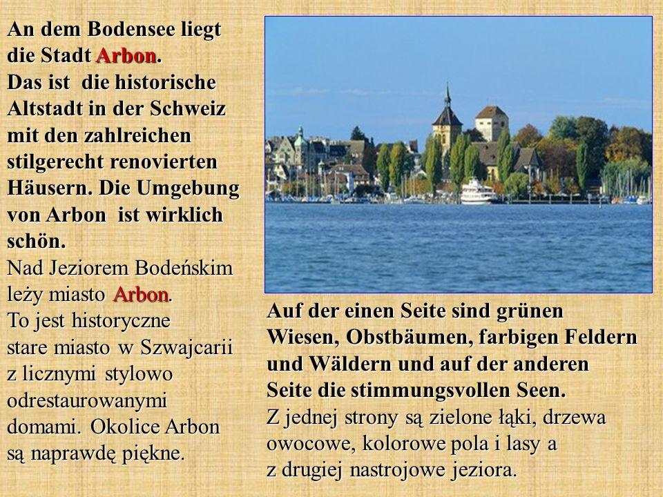 An dem Bodensee liegt die Stadt Arbon