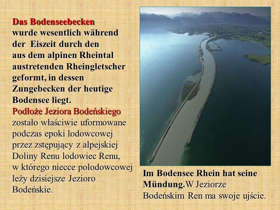 Das Bodenseebecken wurde wesentlich während der Eiszeit durch den aus dem alpinen Rheintal austretenden Rheingletscher geformt, in dessen Zungebecken der heutige Bodensee liegt. Podłoże Jeziora Bodeńskiego zostało właściwie uformowane podczas epoki lodowcowej przez zstępujący z alpejskiej Doliny Renu lodowiec Renu, w którego niecce polodowcowej leży dzisiejsze Jezioro Bodeńskie.