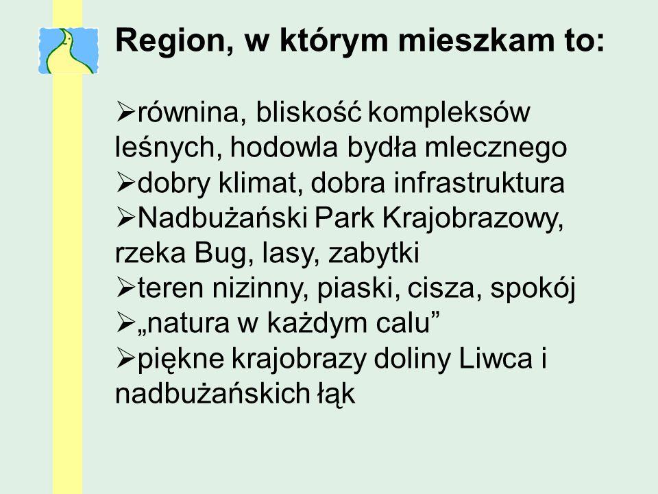 Region, w którym mieszkam to: