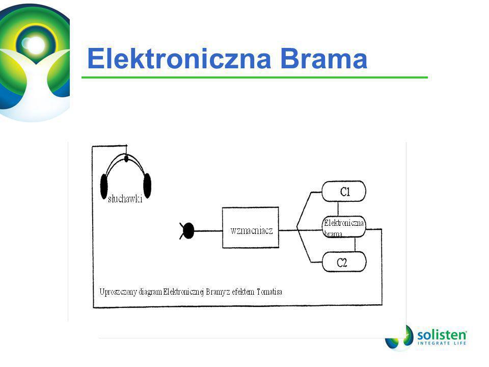 Elektroniczna Brama