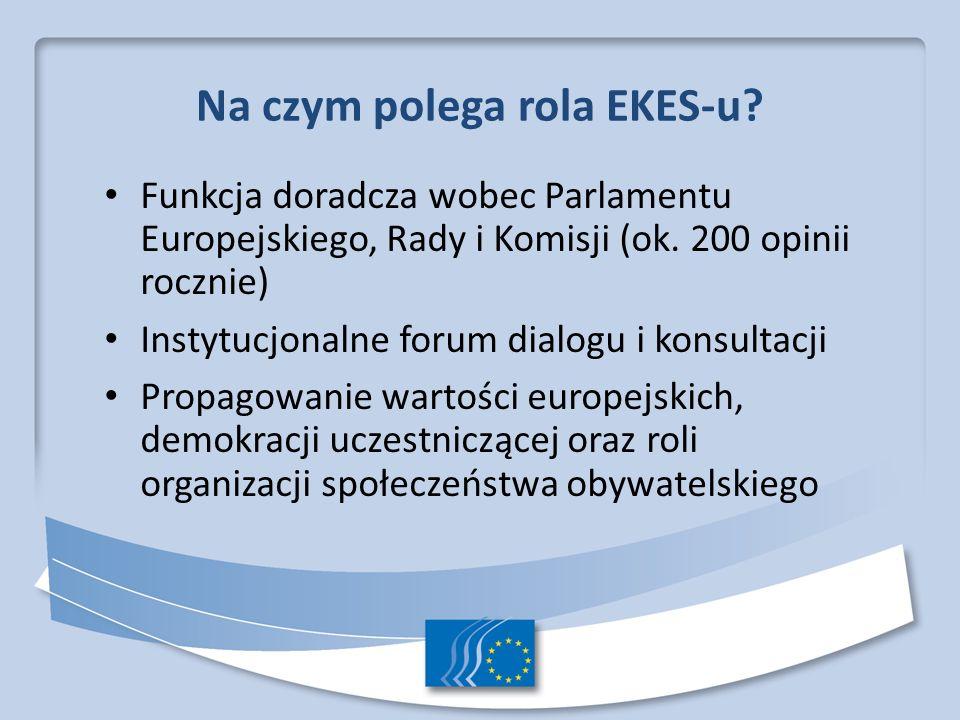 Na czym polega rola EKES-u
