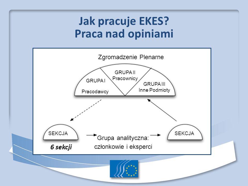 Praca nad opiniami 6 sekcji Zgromadzenie Plenarne Grupa analityczna: