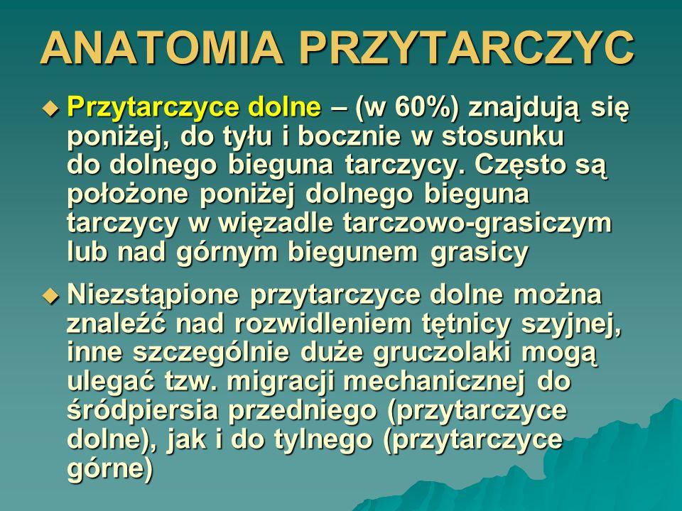 ANATOMIA PRZYTARCZYC