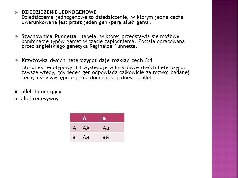 DZIEDZICZENIE JEDNOGENOWE Dziedziczenie jednogenowe to dziedziczenie, w którym jedna cecha uwarunkowana jest przez jeden gen (parę alleli genu).
