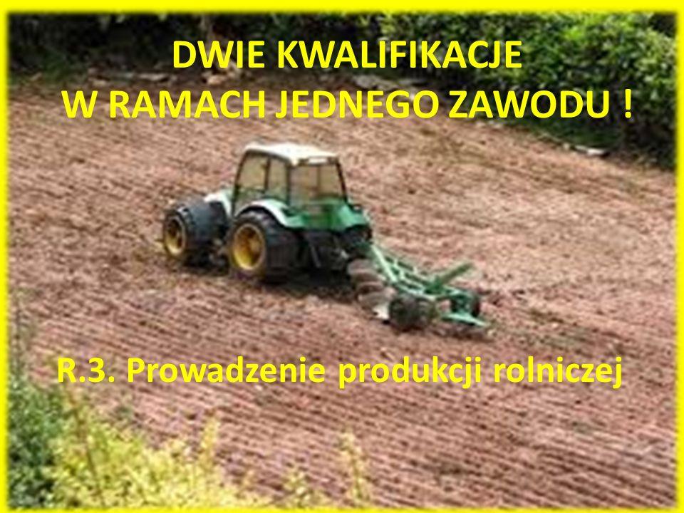 W RAMACH JEDNEGO ZAWODU !