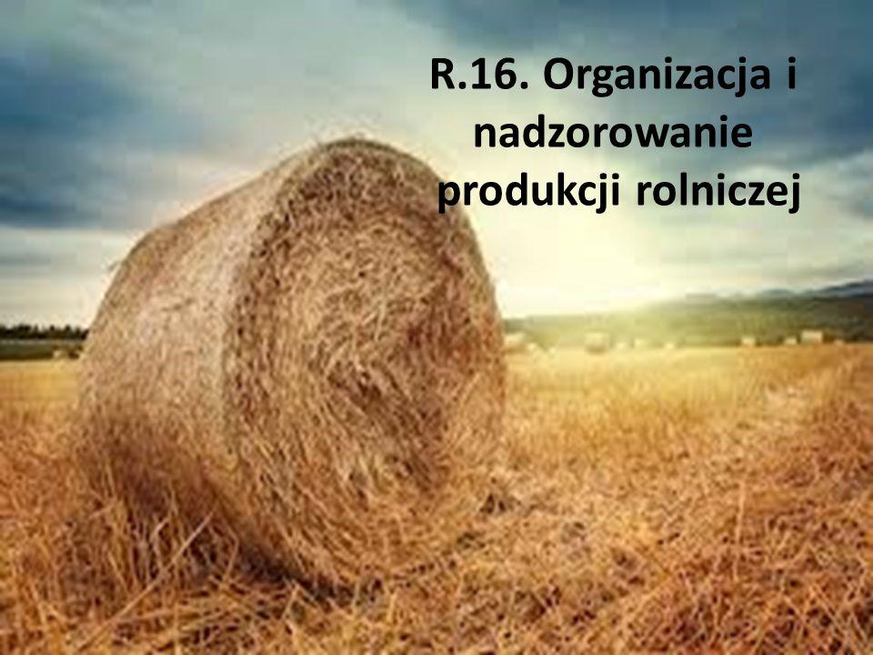 R.16. Organizacja i nadzorowanie