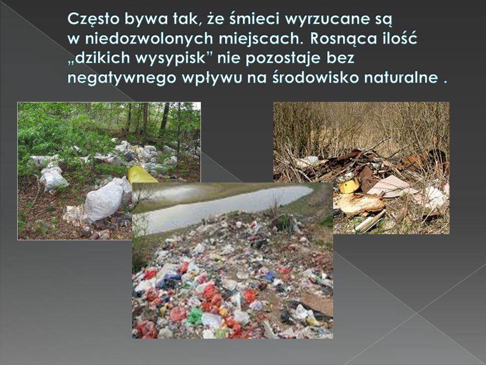 Często bywa tak, że śmieci wyrzucane są w niedozwolonych miejscach
