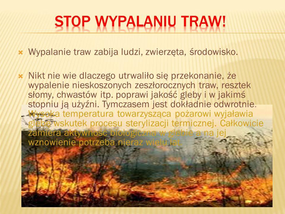 Stop wypalaniu traw! Wypalanie traw zabija ludzi, zwierzęta, środowisko.