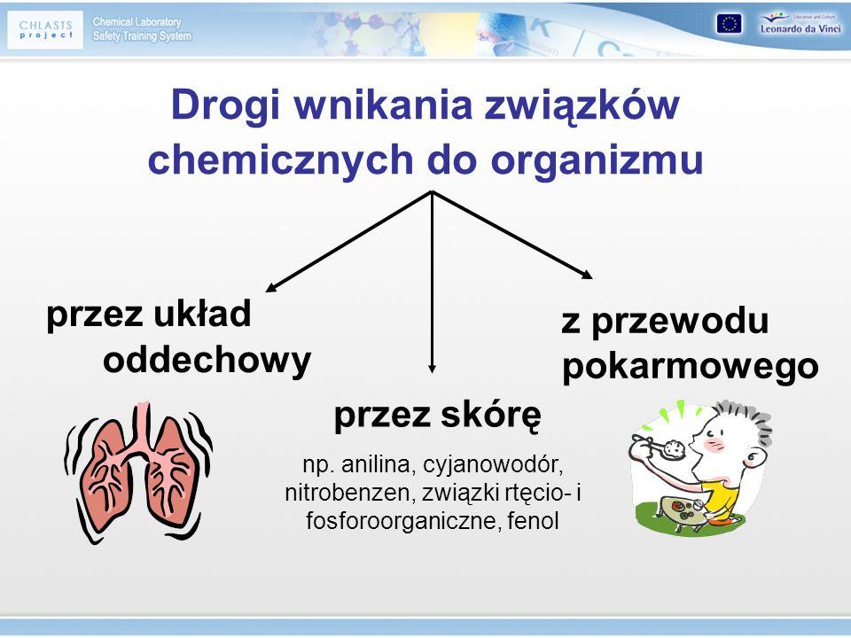 Drogi wnikania związków chemicznych do organizmu