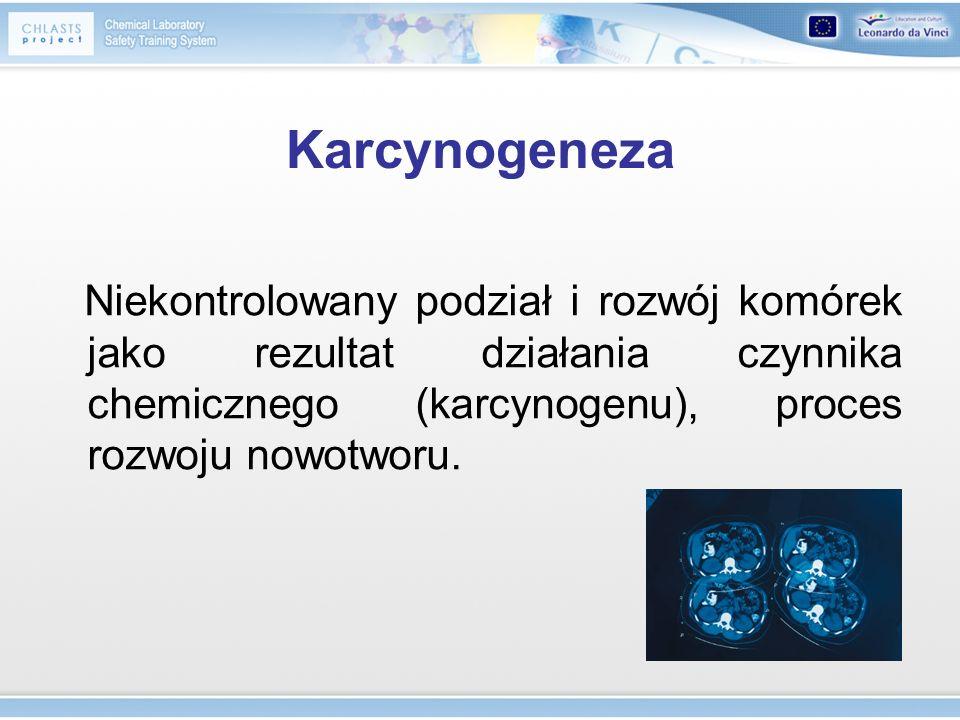 Karcynogeneza Niekontrolowany podział i rozwój komórek jako rezultat działania czynnika chemicznego (karcynogenu), proces rozwoju nowotworu.