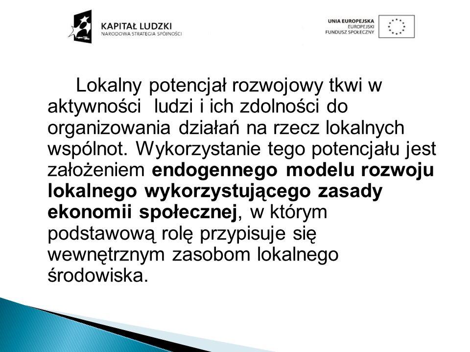 Lokalny potencjał rozwojowy tkwi w aktywności ludzi i ich zdolności do organizowania działań na rzecz lokalnych wspólnot. Wykorzystanie tego potencjału jest założeniem endogennego modelu rozwoju lokalnego wykorzystującego zasady ekonomii społecznej, w którym podstawową rolę przypisuje się wewnętrznym zasobom lokalnego środowiska.
