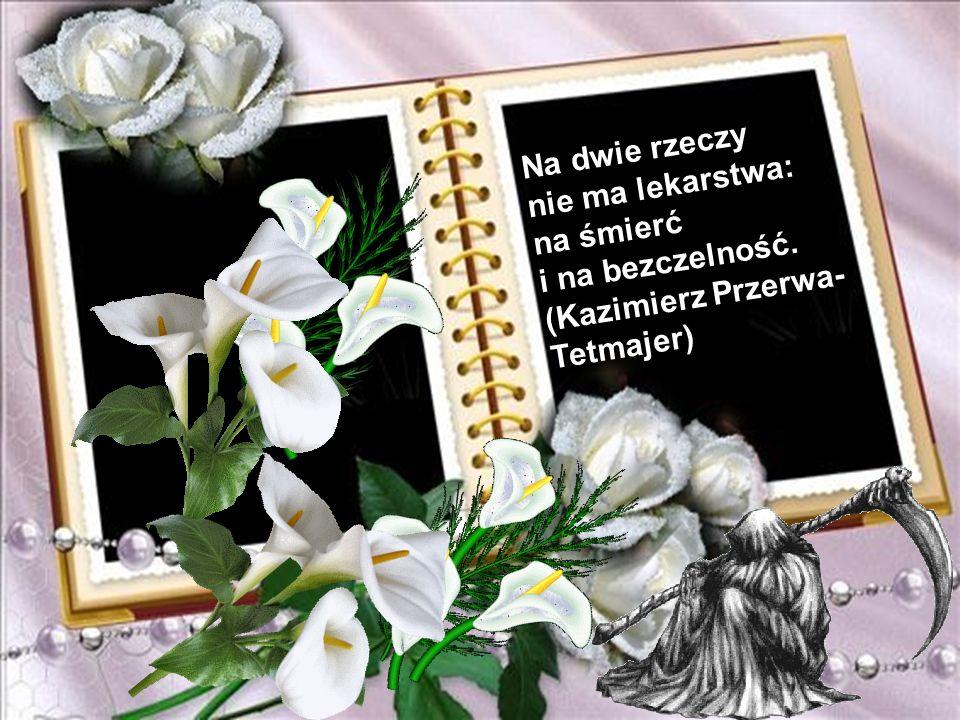 Na dwie rzeczy nie ma lekarstwa: na śmierć i na bezczelność. (Kazimierz Przerwa-Tetmajer)