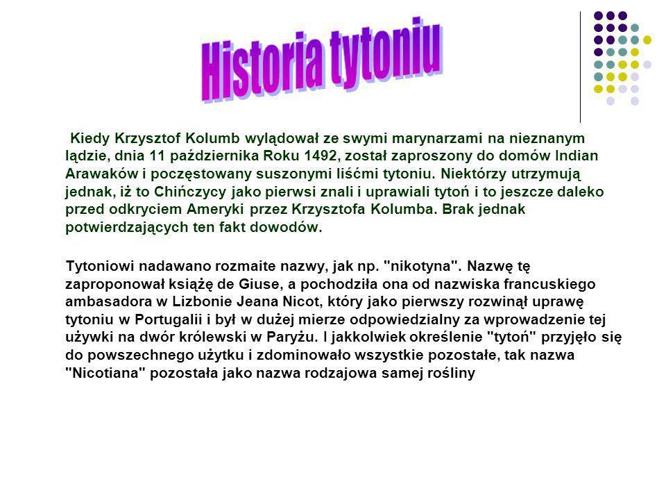 Historia tytoniu