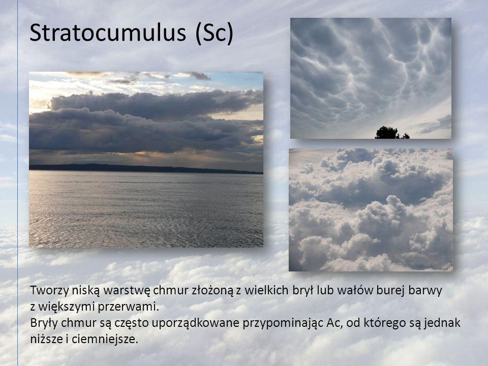 Stratocumulus (Sc) Tworzy niską warstwę chmur złożoną z wielkich brył lub wałów burej barwy. z większymi przerwami.