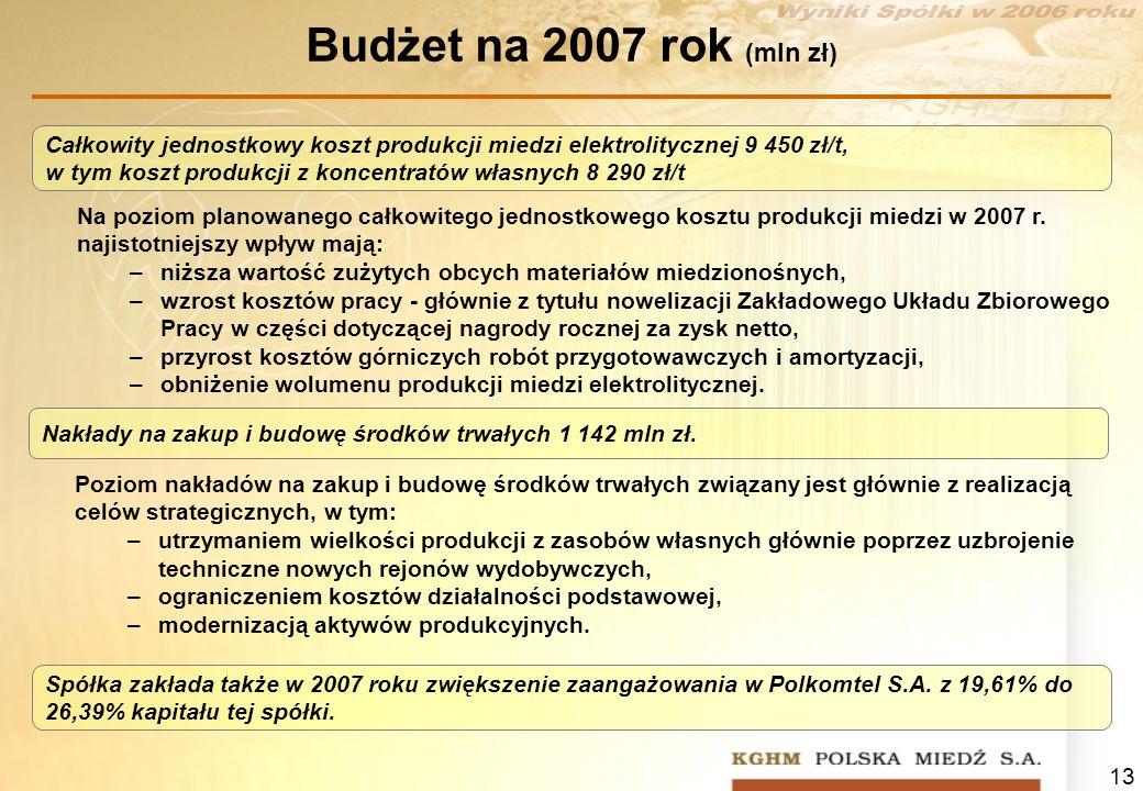 Budżet na 2007 rok (mln zł)