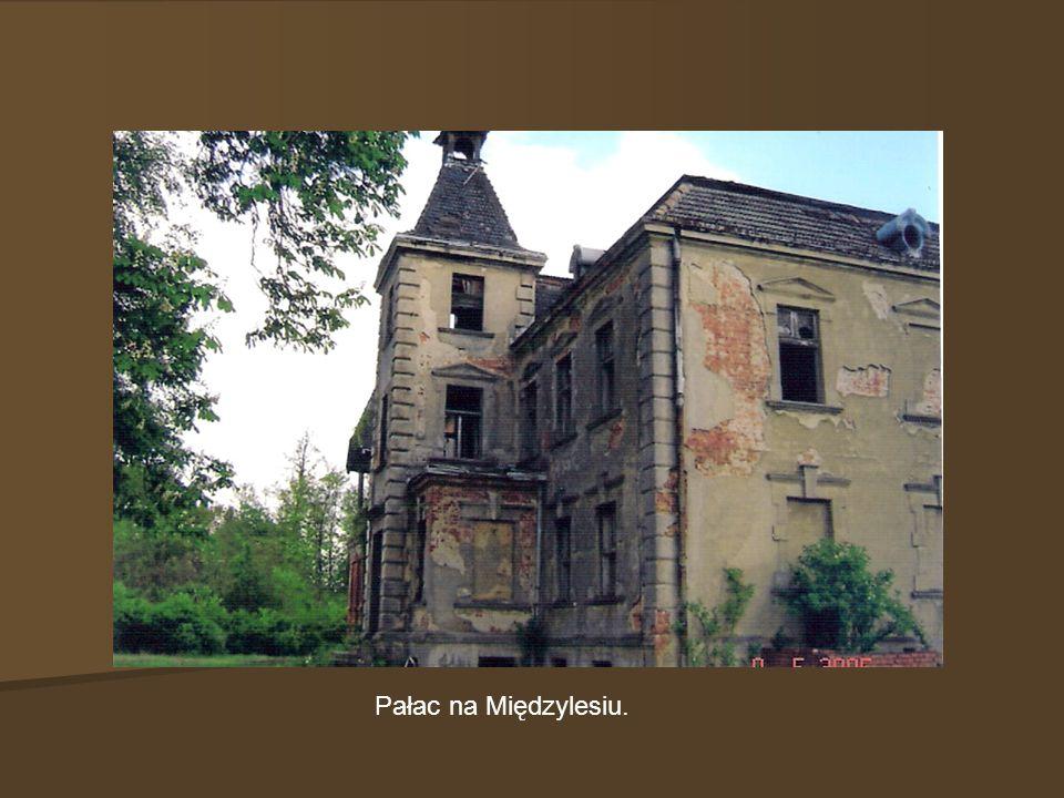 Pałac na Międzylesiu.
