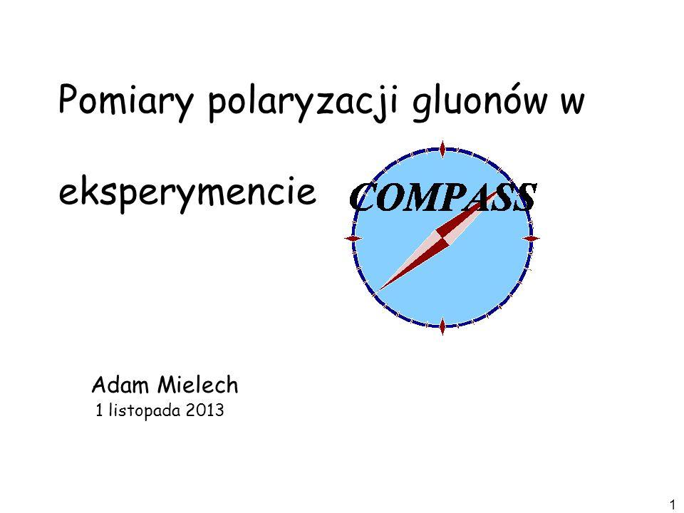 Pomiary polaryzacji gluonów w eksperymencie