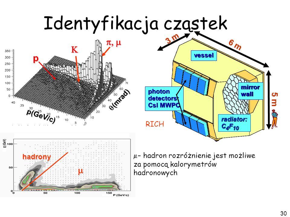 Identyfikacja cząstek