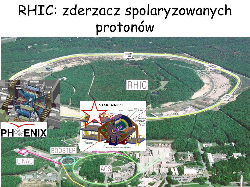 RHIC: zderzacz spolaryzowanych protonów