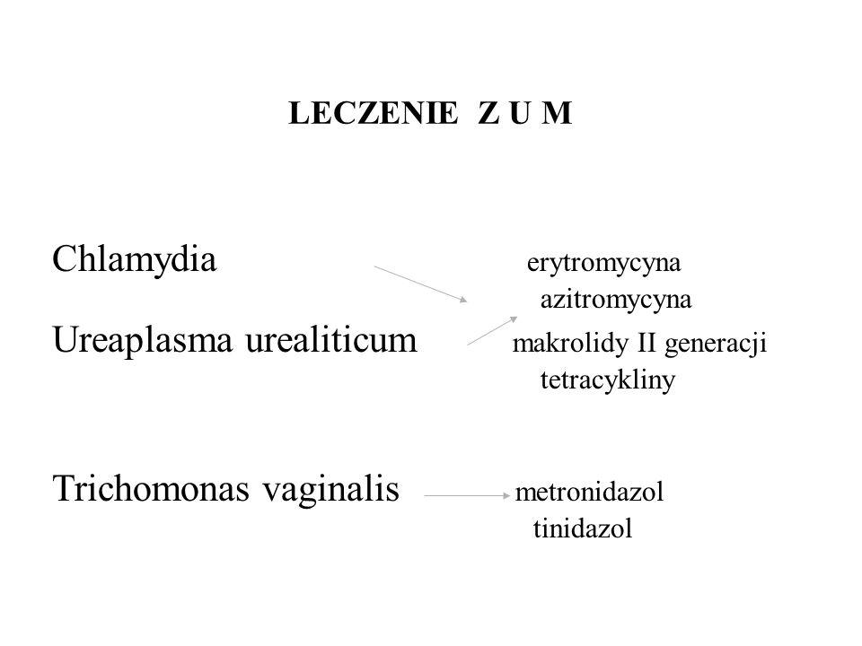 Chlamydia erytromycyna Ureaplasma urealiticum makrolidy II generacji