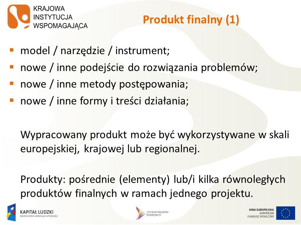 Produkt finalny (1) model / narzędzie / instrument;