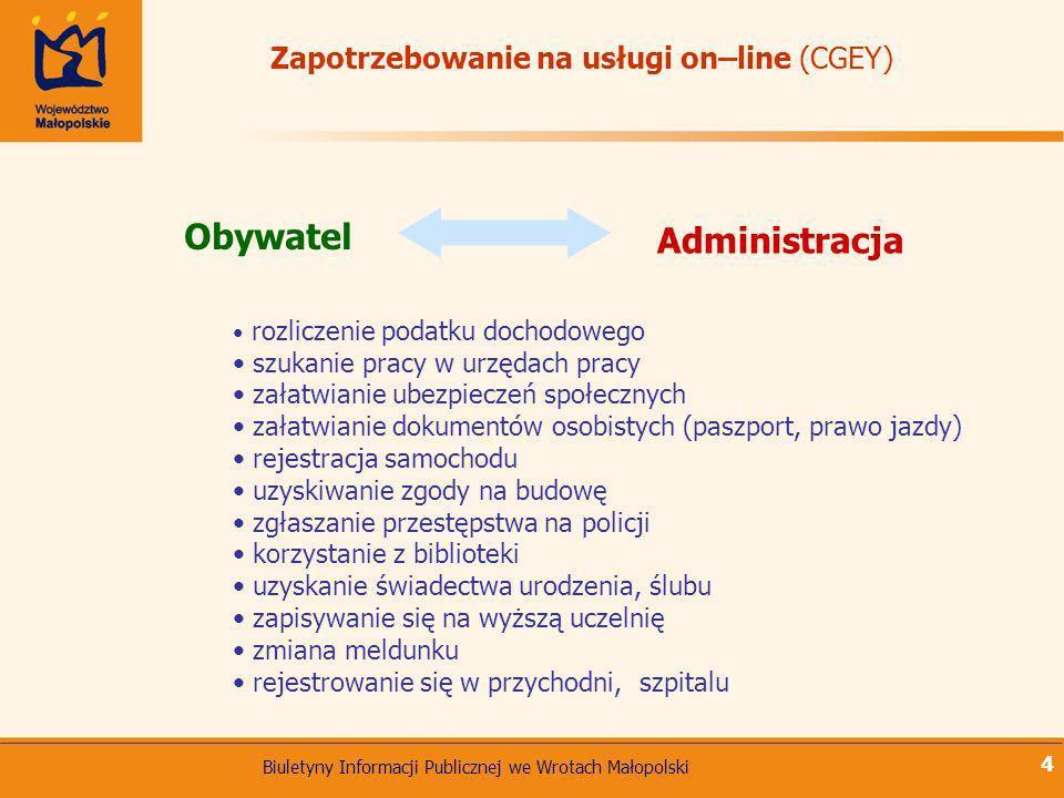 Zapotrzebowanie na usługi on–line (CGEY)