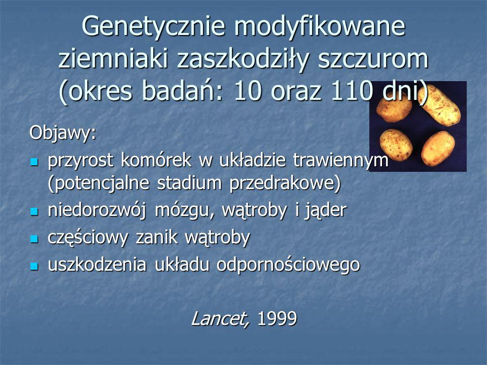 Genetycznie modyfikowane ziemniaki zaszkodziły szczurom (okres badań: 10 oraz 110 dni)