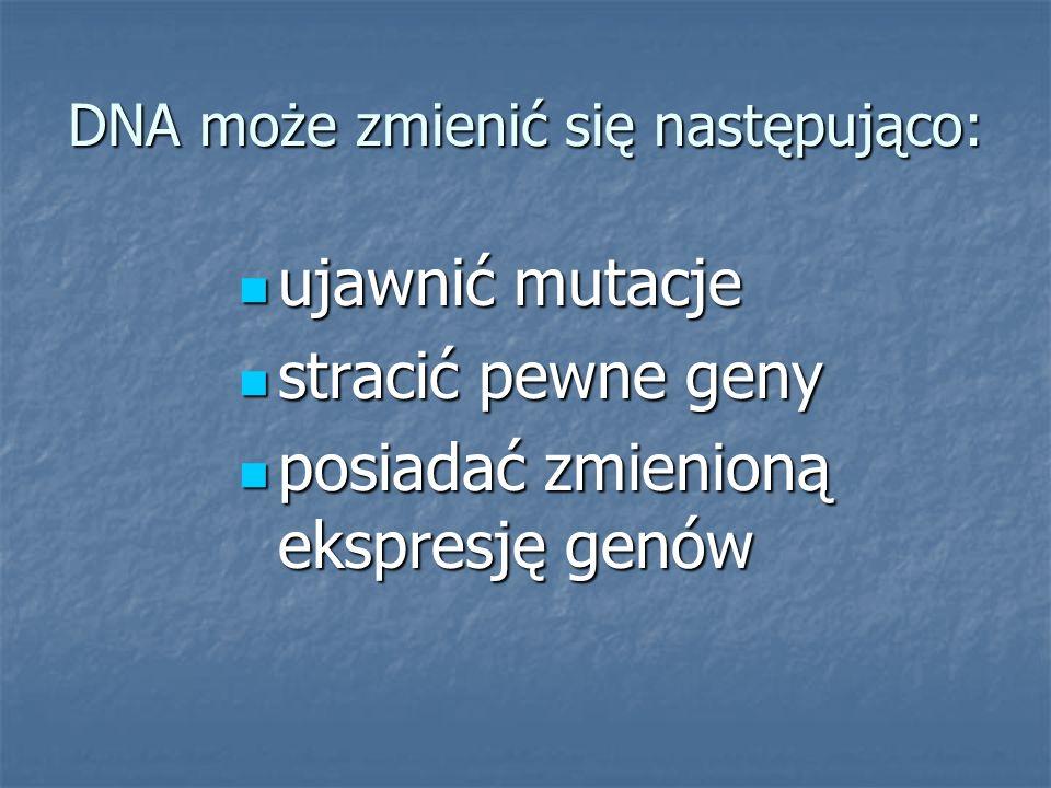 DNA może zmienić się następująco: