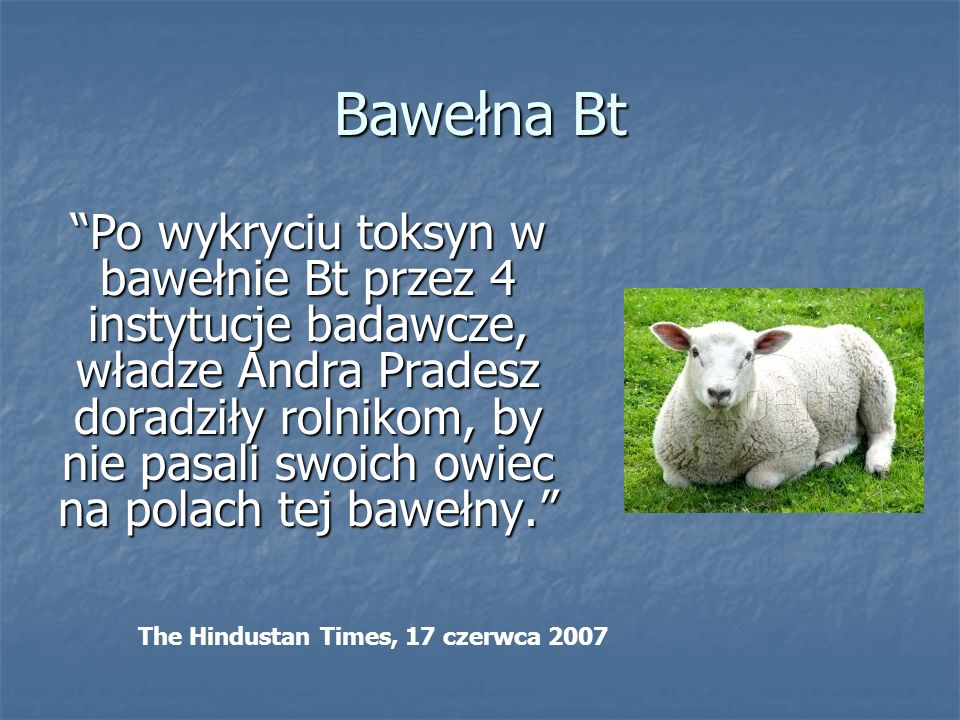 Bawełna Bt
