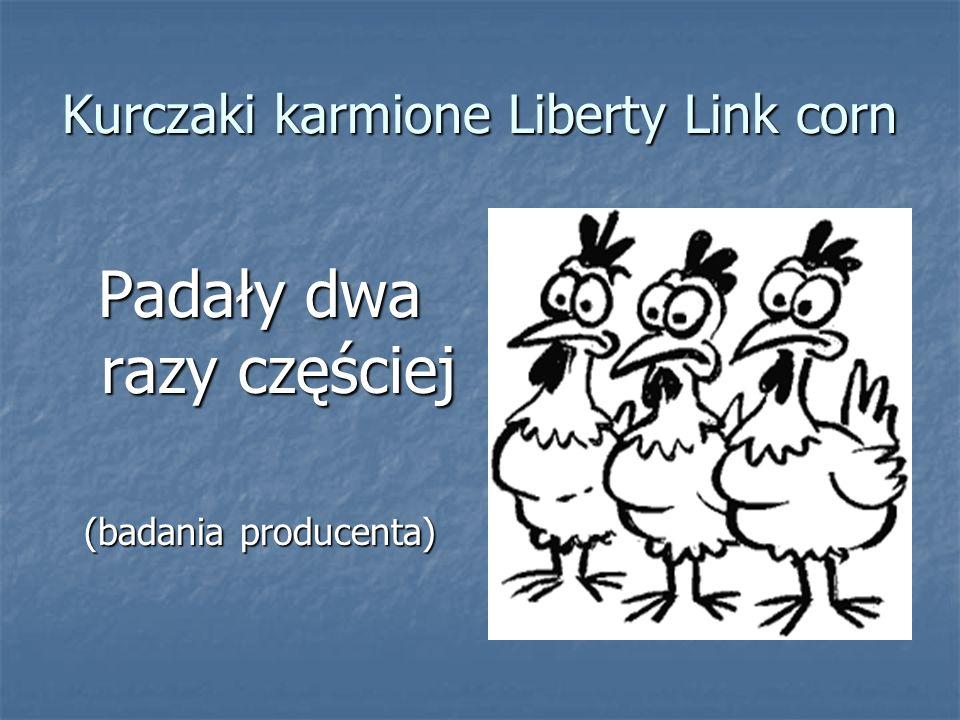 Kurczaki karmione Liberty Link corn