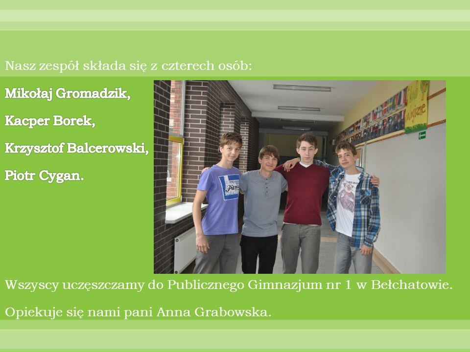Nasz zespół składa się z czterech osób: Mikołaj Gromadzik, Kacper Borek, Krzysztof Balcerowski, Piotr Cygan.