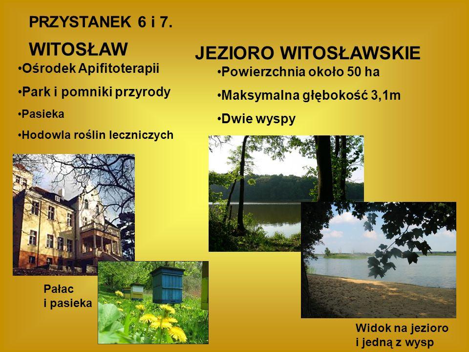 WITOSŁAW JEZIORO WITOSŁAWSKIE PRZYSTANEK 6 i 7. Ośrodek Apifitoterapii