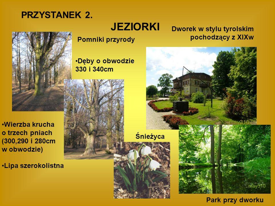JEZIORKI PRZYSTANEK 2. Dworek w stylu tyrolskim pochodzący z XIXw