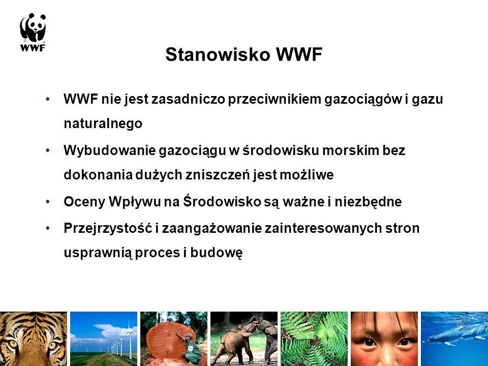Stanowisko WWF WWF nie jest zasadniczo przeciwnikiem gazociągów i gazu naturalnego.