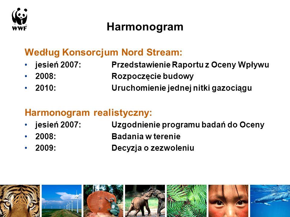 Według Konsorcjum Nord Stream: