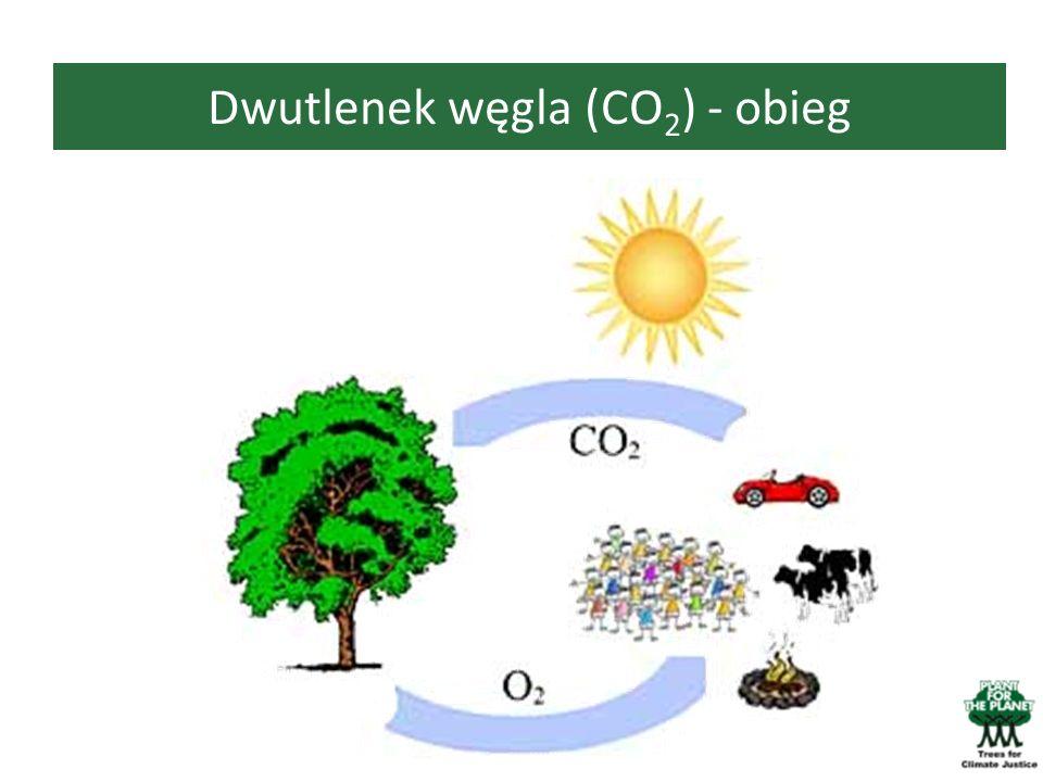 Dwutlenek węgla (CO2) - obieg