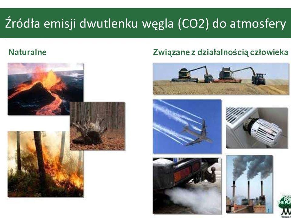 Źródła emisji dwutlenku węgla (CO2) do atmosfery