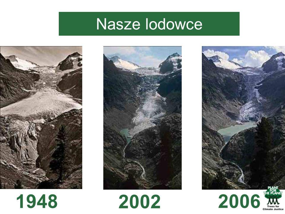 Nasze lodowce