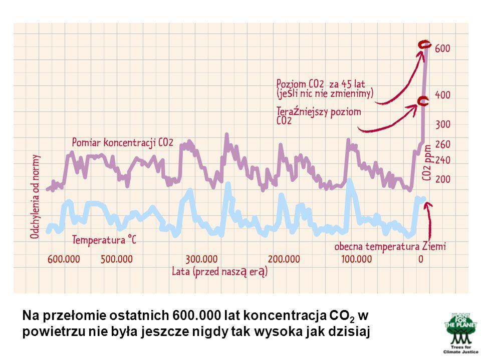 Obraz ten przedstawia wyniki naukowców.