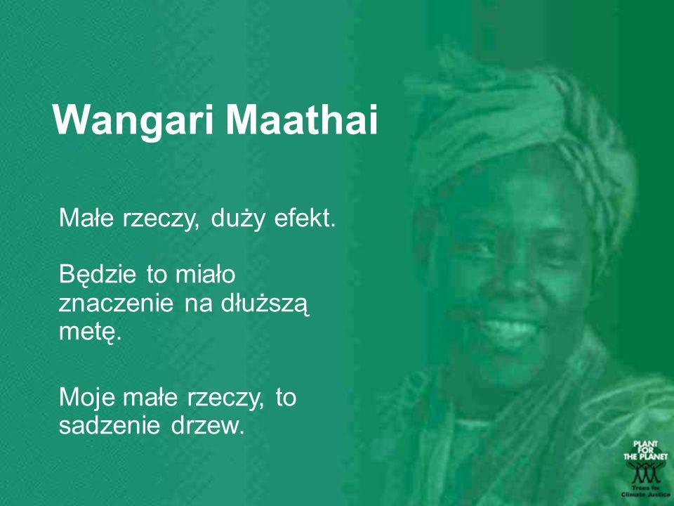 Wangari Maathai Małe rzeczy, duży efekt.
