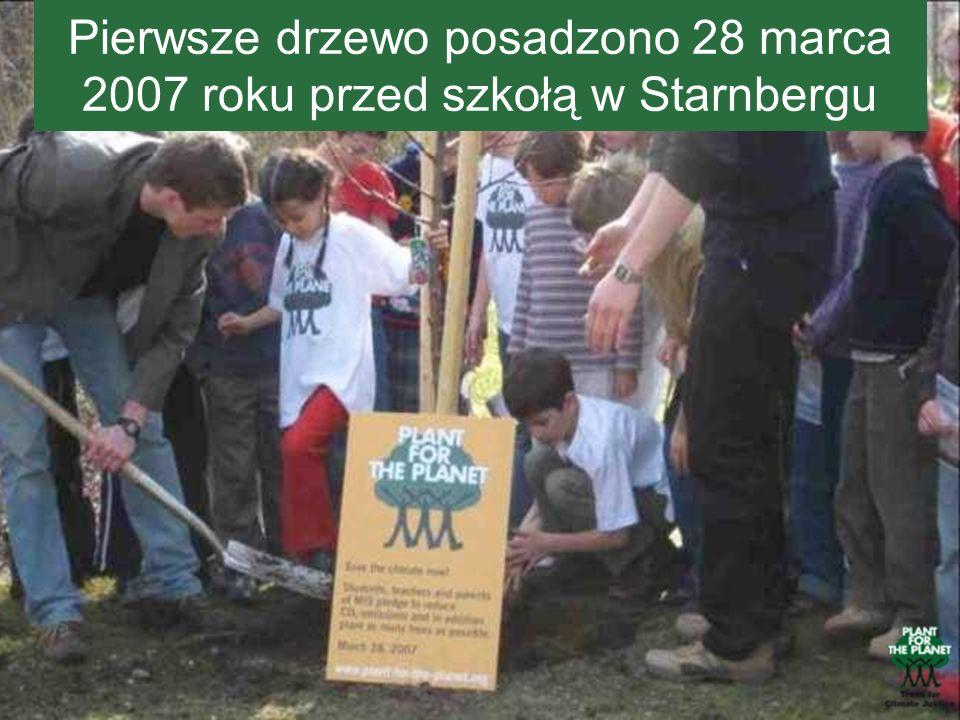 Pierwsze drzewo posadzono 28 marca 2007 roku przed szkołą w Starnbergu
