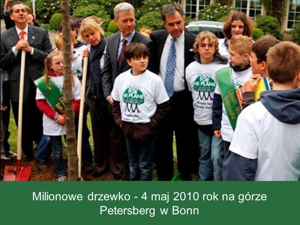 Milionowe drzewko - 4 maj 2010 rok na górze Petersberg w Bonn