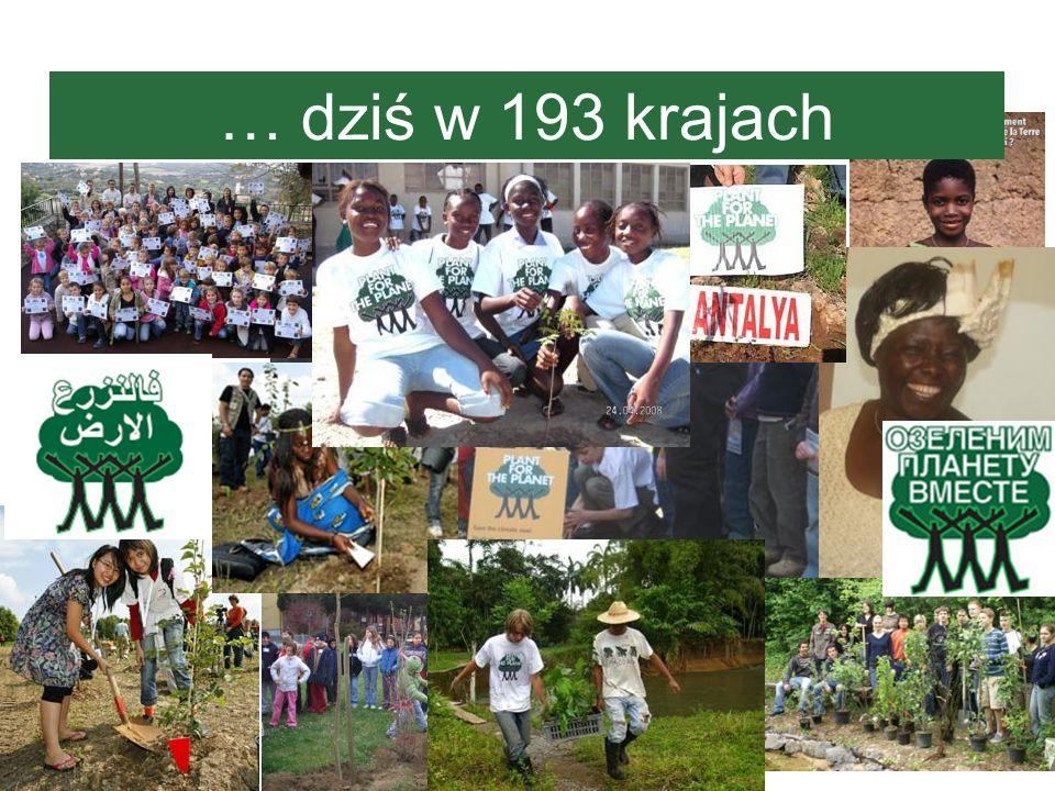 … dziś w 193 krajach Tutaj widzicie logo w rozmaitych językach oraz kilka zdjęć ze światowych akcji sadzenia drzewek.