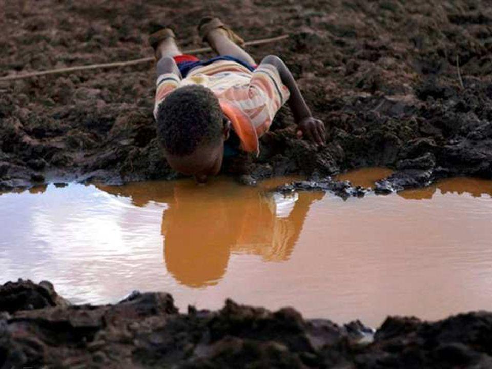 01/29/10 W wielu krajach na świecie brakuje wody pitnej. Chłopiec ten nie obserwuje swojego odbicia w wodzie, on pije wodę!