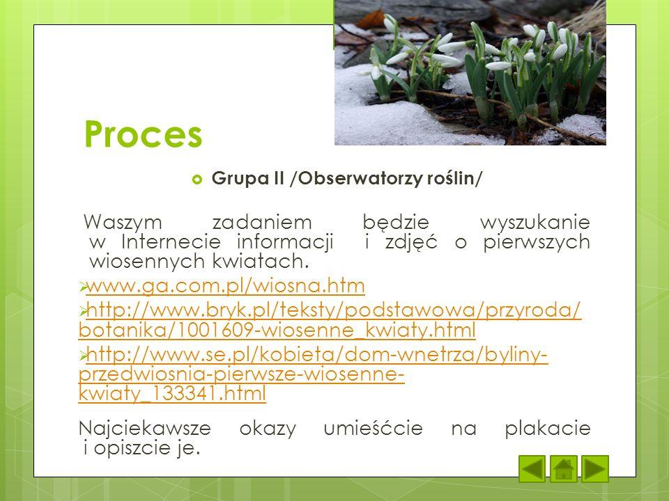 Grupa II /Obserwatorzy roślin/