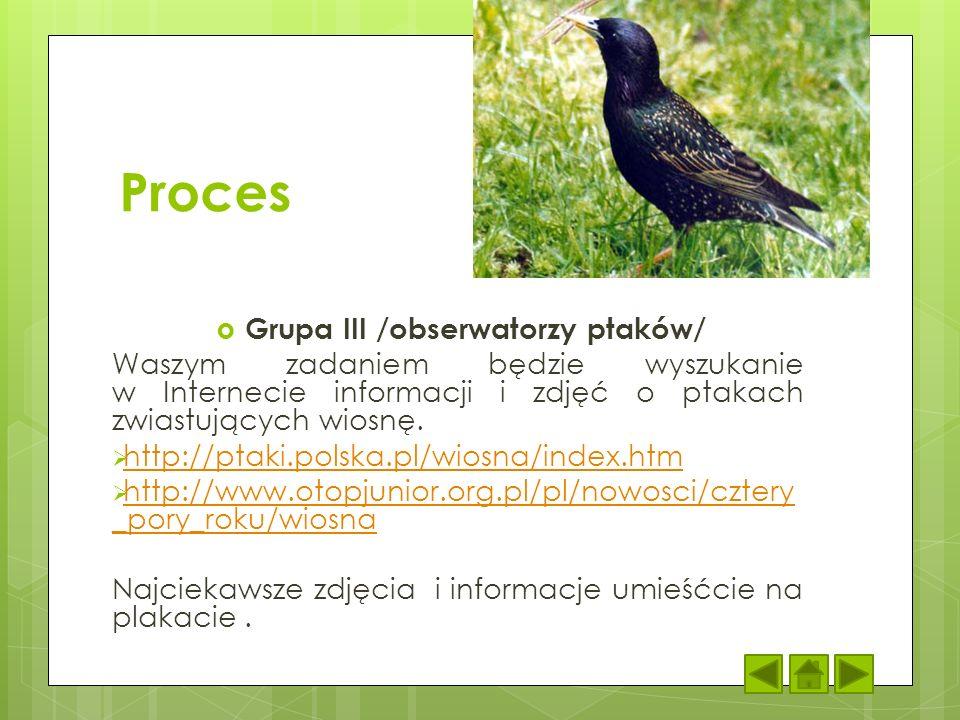 Grupa III /obserwatorzy ptaków/