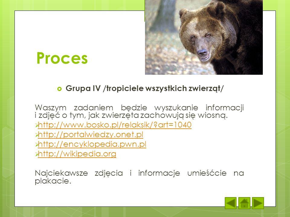 Grupa IV /tropiciele wszystkich zwierząt/